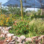 jardin bellamar